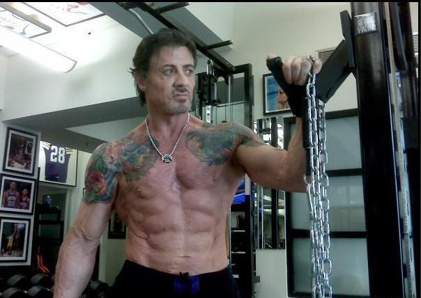dutch bodybuilding forum steroids