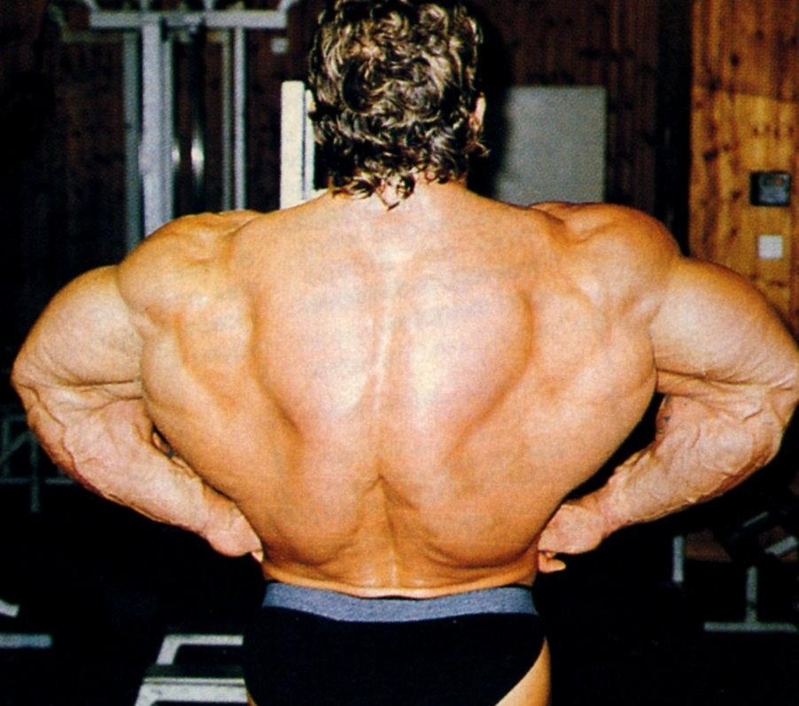 Can someone post some good pics of Dorian Yates? - Page 4 ...