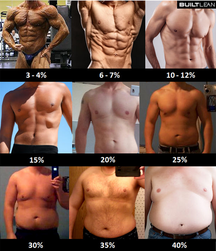 How to lose 15 percent body fat fast