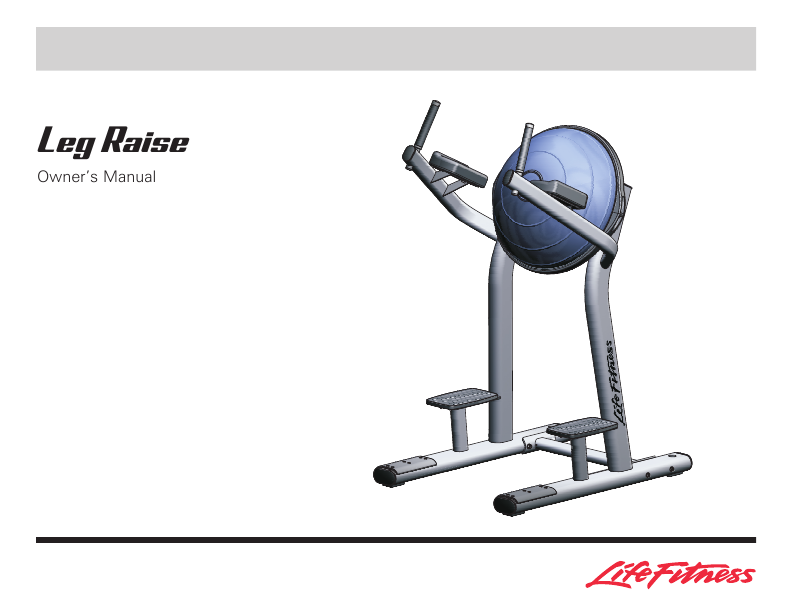 ab leg raises machine