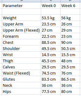 Hardcore ectomorph transformation workout (continued) - Bodybuilding
