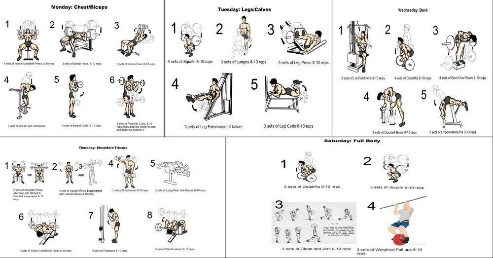 Workout Routines Database: 1000+ Free Workout Plans