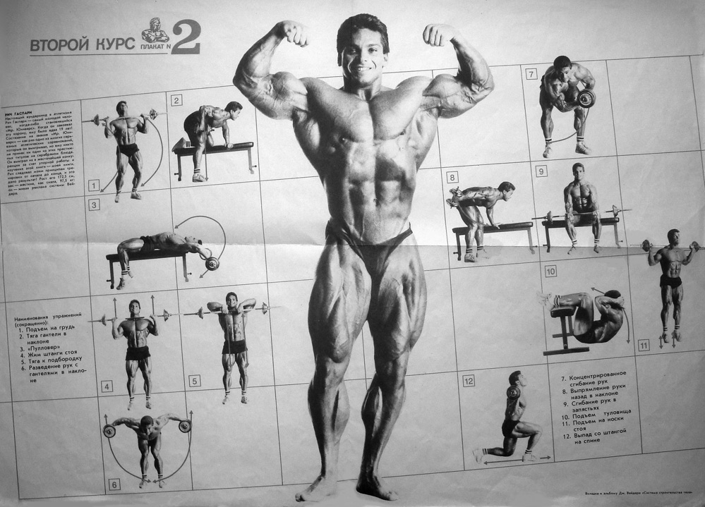 Joe Weider Programs (beginner to advanced) - Bodybuilding