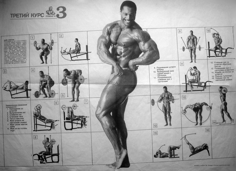 Joe Weider Programs (beginner to advanced) - Bodybuilding com Forums