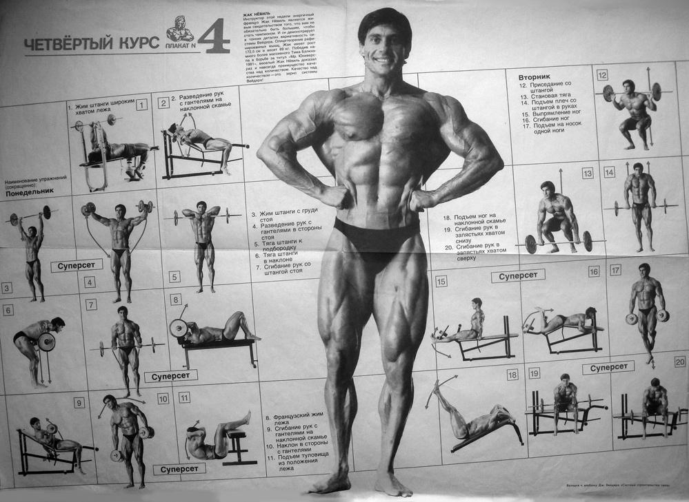Рецепт начинающий бодибилдер: бодибилдинг - системы упражнений со штангой, гирями и гантелями