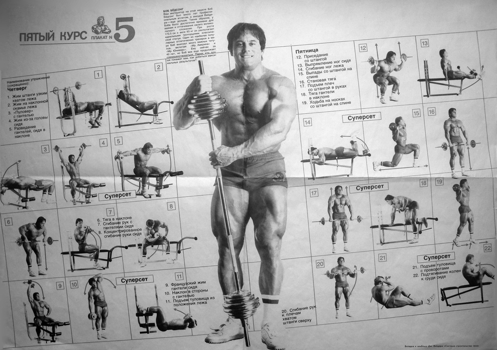 Joe Weider Programs Beginner To Advanced Bodybuilding Com Forums