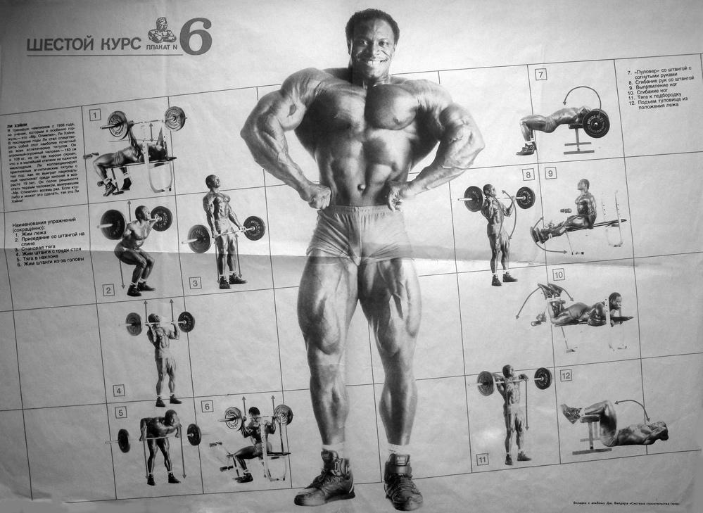 Joe Weider Programs (beginner to advanced) - Bodybuilding com Forums